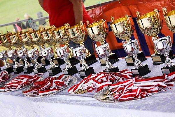 Cup_Denmark_06